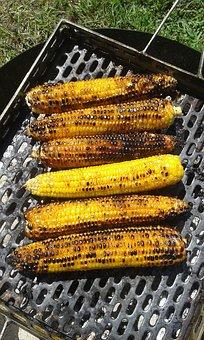 corn-2704899__340